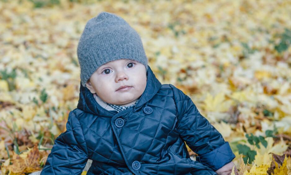 <strong>SJARMØR:</strong> Prins Oscar er godt kledd for vinteren i et nytt bilde som er tatt av hans mamma, Sveriges kronprinsesse Victoria. FOTO: Kungahuset.se