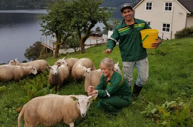 FELLES INTERESSER: Både Ruben og Julie er glad i dyr. Her koser de seg blant sauene på gården til Ruben. Foto: Privat