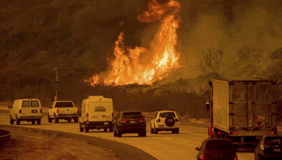 EVAKUERER: Mer enn 230 000 mennesker har måttet evakuere fra hjemmene sine. Foto: AP Photo/Noah Berger