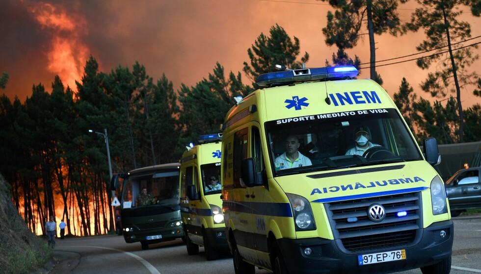 DRAMATISK: Ambulanser og brannmenn kjempet mot flammene og reddet menneskeliv under den voldsomme skogbrannen i nærheten av fjorårets «Mesternes mester»-innspilling. Foto: AFP/ NTB scanpix