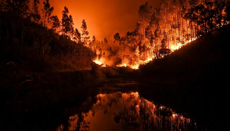 STORE ØDELEGGELSER: Flammehavet avbildet ved en elv i Penela, Coimbra i det sentrale Portugal 18. juni 2017. Foto: AFP/ NTB scanpix
