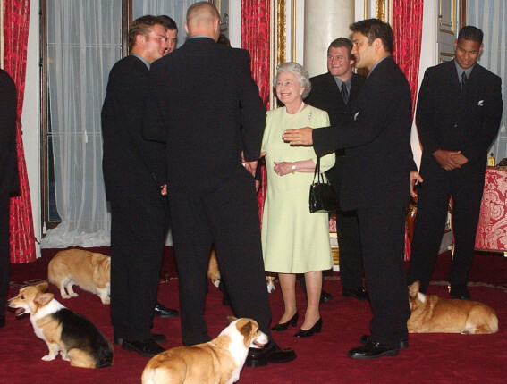 CORGI-ELSKER: Dronning Elizabeth på Buckingham Palace sammen med et rugbylag fra New Zealand - og flere av sine kongelige corgier - i 2003. Foto: AP/ NTB scanpix