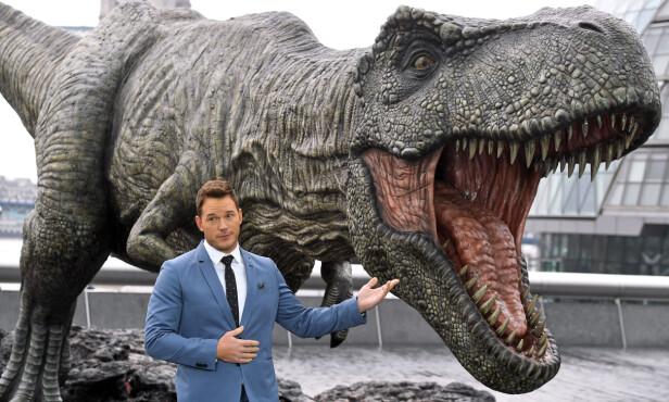 FORSKER: I «Jurassic World» spiller Pratt en dinosaurforsker, en rolle som har gjort ham til stjernen han er i dag. Foto: NTB Scanpix