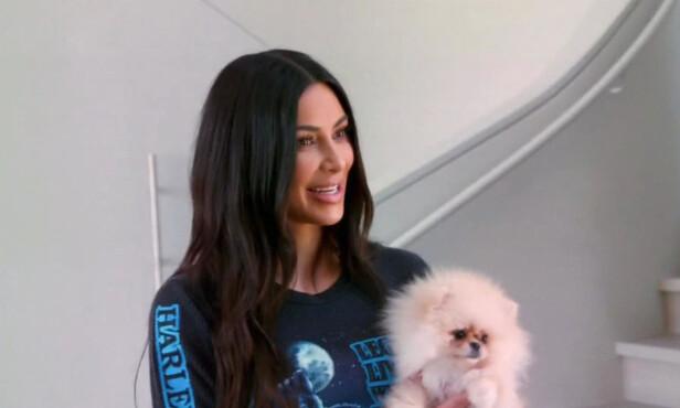 FLERE HUNDER: Kim Kardashian eier flere hunder. Her holder hun hunden til datteren North West. En pomeranian som heter Sushi. Foto: NTB Scanpix