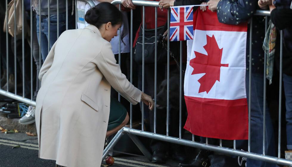 DYREVENN: Hertuginnen, som selv har to hunder, tok seg også tid til å hilse på de firbeinte som var til stede i gatene i forbindelse med hertugparets besøk. Foto: NTB scanpix