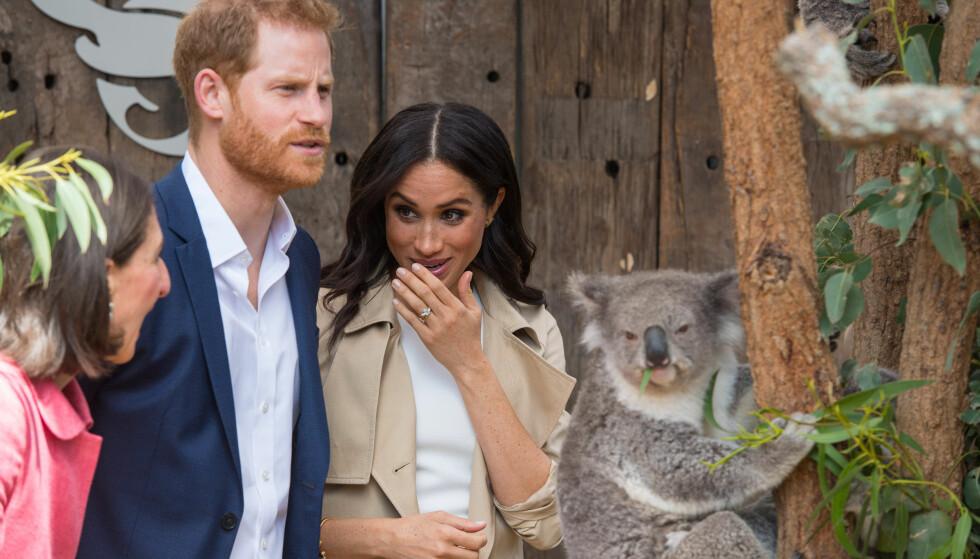 <strong>YNDIG:</strong> Prins Harry og hertuginne Meghan er for tiden i Australia, der de blant annet besøkte en dyrehage. Etter at det dukket opp bilder av paret med en søt koala, begynte enkelte å spekulere på om hertuginnen ikke holdt den på grunn av smittefare. Foto: NTB scanpix