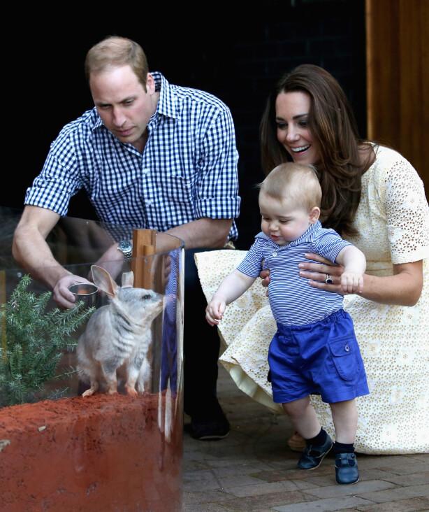 <strong>SAMME DYREHAGE:</strong> Hertugparet av Cambridge besøkte dyrehagen i 2014, sammen med lille prins George. Foto: NTB scanpix