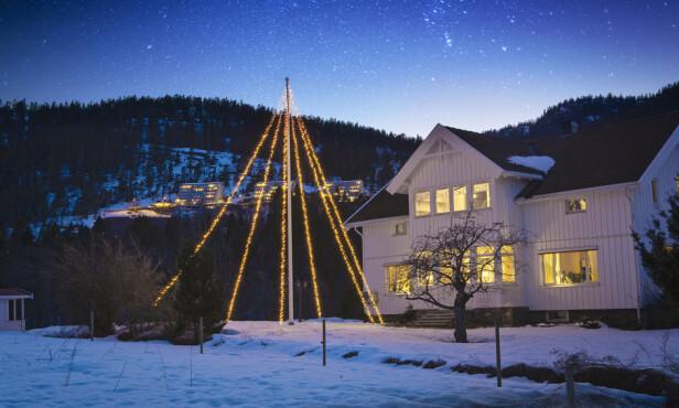 <strong>FLAGGSTANG-JULETRE:</strong> Å pynte flaggstanga blir bare mer og mer populært! «Herregård» passer til flaggstenger opp til 10 meter og har 2400 varmhvite LED-lys.