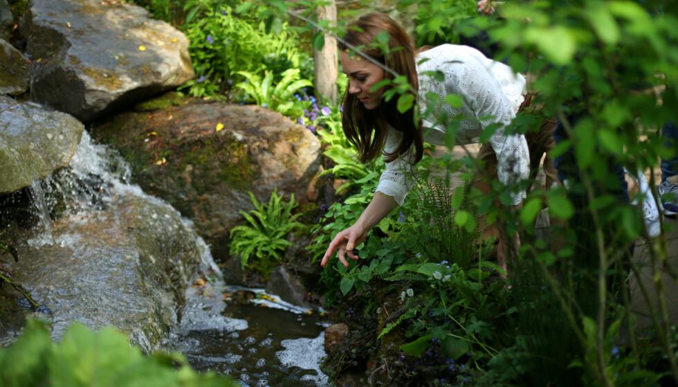 GARTNER: Kate har vært med å designe en av hagene under Chelsea Garden Show. Foto: NTB Scanpix