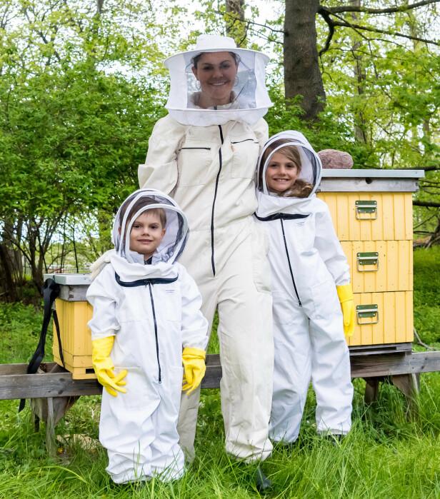 I HAGEN: Den svenske kronprinsessefamilien har bier i hagen, og tidligere denne uken fikk Estelle og Oscar treffe biene for første gang. Foto: NTB Scanpix