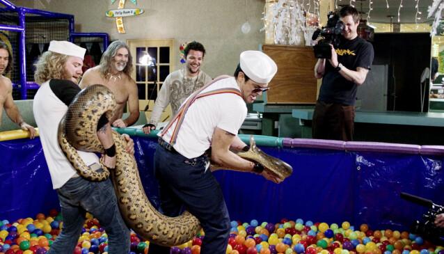 VILLE: Gutta fra «Jackass» er kjent for sine elleville stunts. Her med en gigantisk slange. Foto: NTB Scanpix