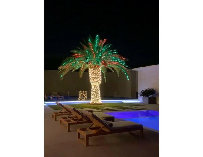 CALIFORNIA: Kylies palme fikk også en jule-makeover, og kjennetegner den vanligvis solfylte julen i staten California. Foto: Skjermdump/Instagram Kylie Jenner