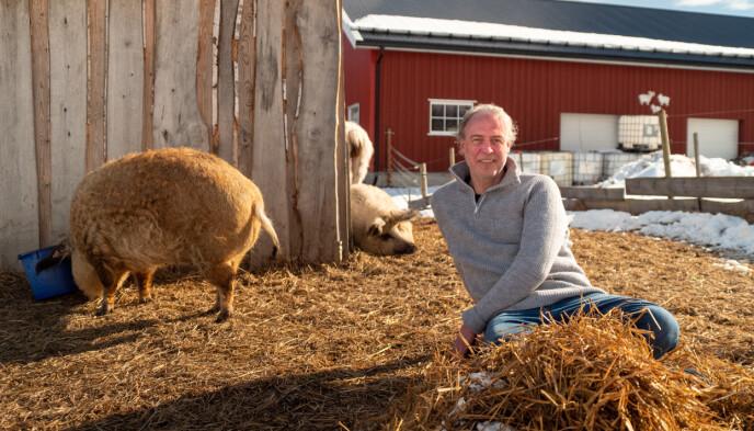 KREATIV: 50 år gamle Stefan Gundersen er kreativ - og god på kjøkkenet. Foto: Espen Glomsvoll / TV 2