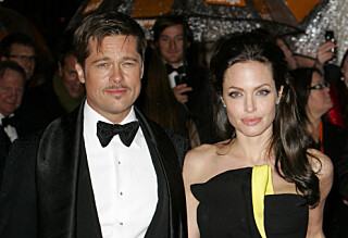 - Brad Pitt får delt omsorg