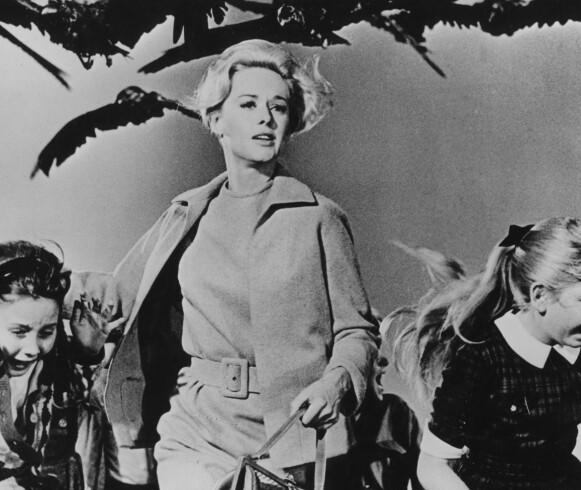ONDE VINGER: Tippi Hedren løper for livet i «Fuglene» av Hitchcock. Foto: NTB