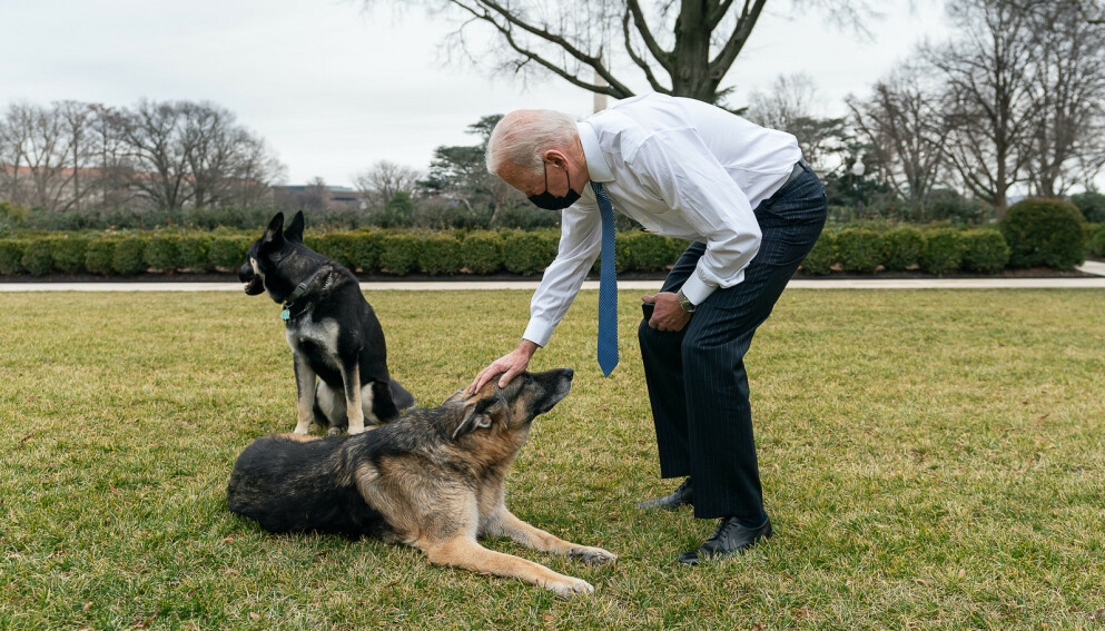I SORG: Joe Biden skriver i en pressemelding at hunden Champ er død, 13 år gammel. Foto: Adam Schultz/The White House/Polaris/NTB