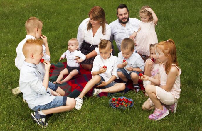 KOS OG GLEDE: Skålen med jordbær og blåbær forsvinner nærmest som «dugg for solen» når June-Maria og Niklas sier at barna kan spise. Foto: Svend Aage Madsen