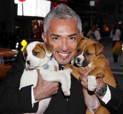 Image: - Hunden hans drepte Queen Latifahs hund