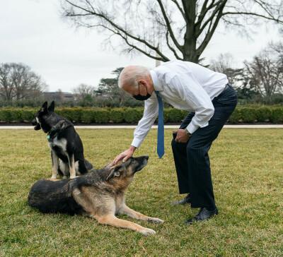 Image: Presidenten deler trist beskjed